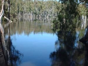 Australie2010 004
